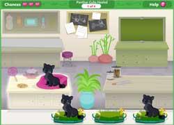 Барби и котята